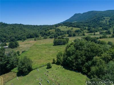 Ashe County Residential Lots & Land For Sale: Tbd Sutherland Road