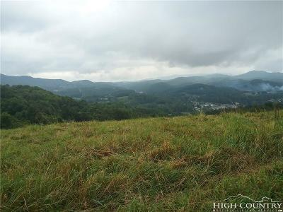 Avery County Residential Lots & Land For Sale: 900 Grandview Lane