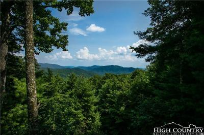 Caldwell County Single Family Home For Sale: 4665 Blowing Rock Boulevard