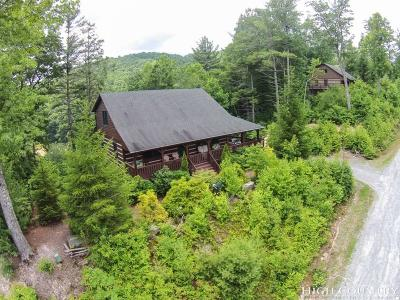 Watauga County Single Family Home For Sale: 197 Woodby Ridge Road