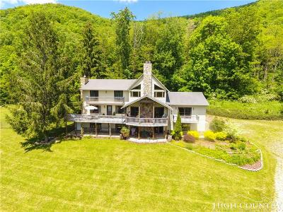 Watauga County Single Family Home For Sale: 8631 & 8633 Highway 194