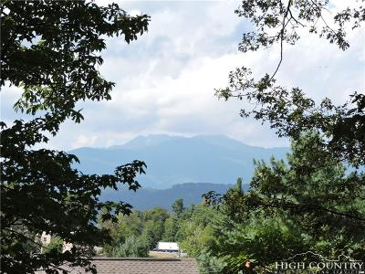 Blowing Rock Single Family Home For Sale: 291 Tarry Acres Circle