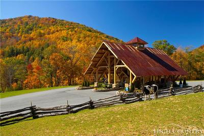 Avery County, Watauga County Residential Lots & Land For Sale: Lot S24 Eagle Cliff Trail