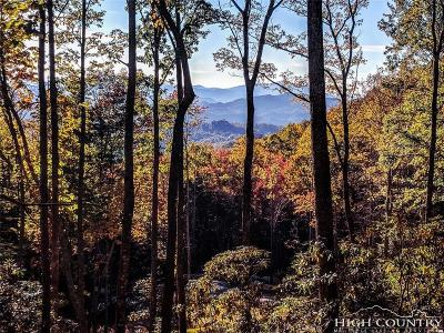 Avery County, Watauga County Residential Lots & Land For Sale: S37 Stone Cliff Trace