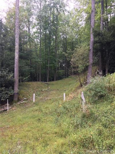 Watauga County Single Family Home For Sale: Tbd Lot 8 Shulls Mill Road