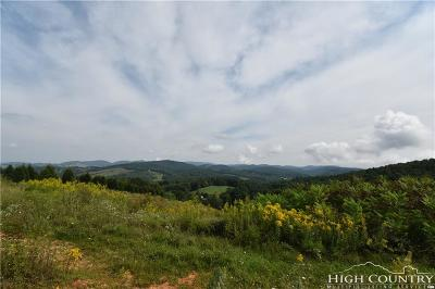 Ashe County Residential Lots & Land For Sale: 3291 S Laurel Fork Road