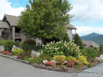 The Reserve At Sugar Mountain Condo/Townhouse For Sale: 314 Ridgeline Drive #17D