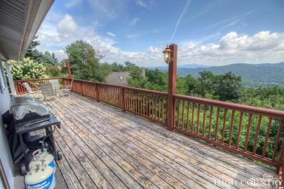 Watauga County Single Family Home For Sale: 783 Alpine Drive