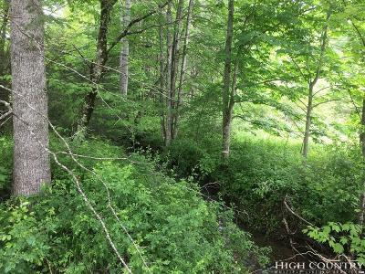 Avery County, Watauga County Residential Lots & Land For Sale: 521 Clint Norris Road