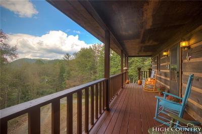 Vilas Single Family Home For Sale: 326 Rabbit Ridge Run