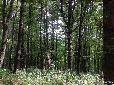 Avery County, Watauga County Residential Lots & Land For Sale: 210 Bennick Drive