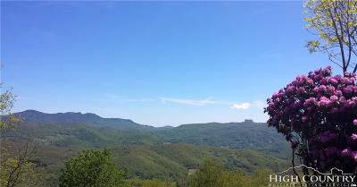 Avery County, Watauga County Residential Lots & Land For Sale: 29 Fox Run Road