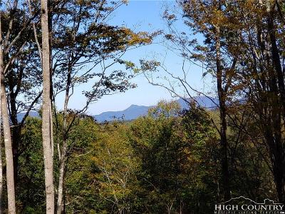 Avery County, Watauga County Residential Lots & Land For Sale: Es7 Eagle Springs Trail