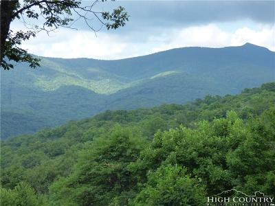 Avery County, Watauga County Residential Lots & Land For Sale: Tbd Maggie Mountain West Road