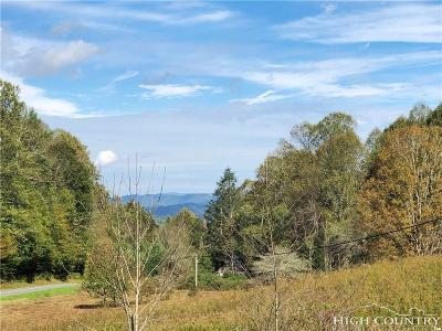 Avery County, Watauga County Residential Lots & Land For Sale: Tract 3 Clarks Creek Road