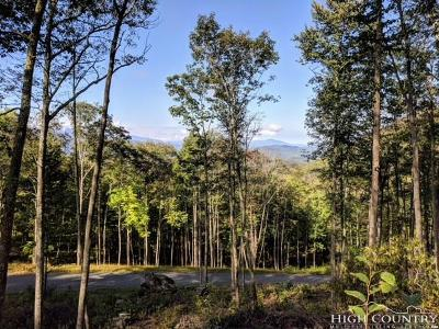 Avery County, Watauga County Residential Lots & Land For Sale: S38 Eagles Nest Trail