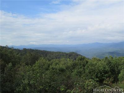 Caldwell County Single Family Home For Sale: 7987 Rocky Knob Road