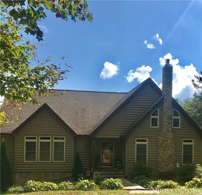 Ashe County Single Family Home For Sale: 259 High Meadows Court