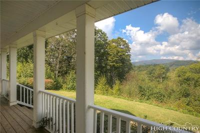 Avery County Single Family Home For Sale: 638 Chestnut Dale Road
