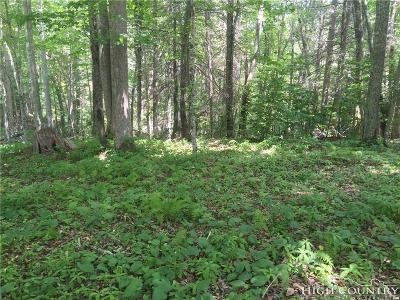 Avery County, Watauga County Residential Lots & Land For Sale: 54 Raven Ridge Road