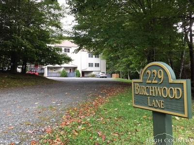 Watauga County Condo/Townhouse For Sale: 229 Birchwood Lane #14B