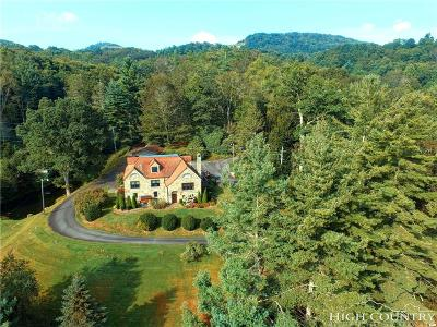 Avery County Single Family Home For Sale: 908 Millers Gap Highway