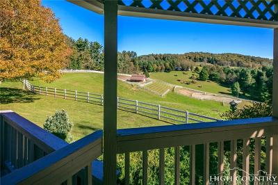 Watauga County Single Family Home For Sale: 315 George Moretz Lane