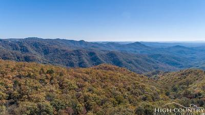 Watauga County Single Family Home For Sale: 737 Sauls Camp Road