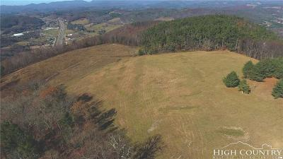 Avery County, Watauga County Residential Lots & Land For Sale: Nc 421 Highway