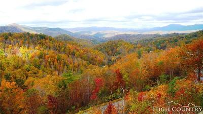 Alexander County, Ashe County, Avery County, Burke County, Caldwell County, Watauga County Condo/Townhouse For Sale: 214 Indian Paintbrush Drive #RC-4