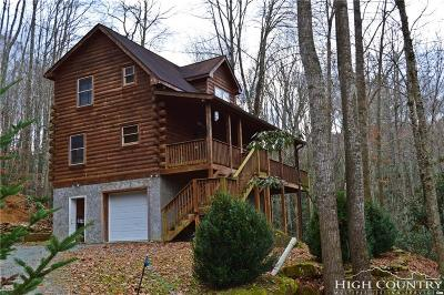Beech Mountain Single Family Home For Sale: 1461 Pine Ridge Road