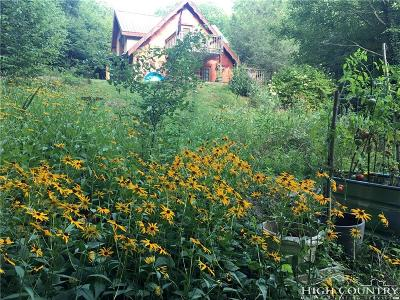 Vilas Single Family Home For Sale: 2596 Mountain Dale Road