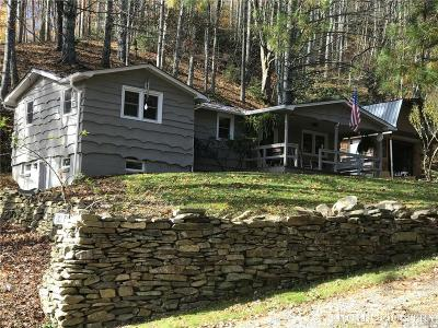 Banner Elk Single Family Home For Sale: 5484 Nc Highway 194 South
