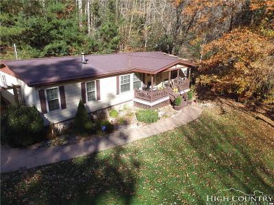Elk Park Single Family Home For Sale: 608 Little Elk Road