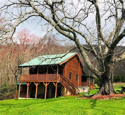 Avery County Single Family Home For Sale: 1385 Edgar Tufts Road