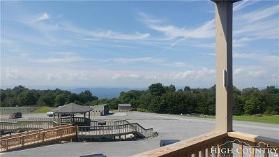 Beech Mountain NC Condo/Townhouse For Sale: $69,700
