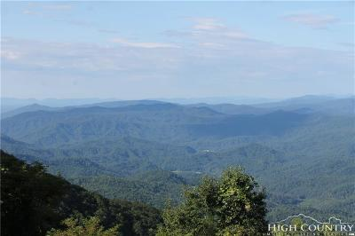 Caldwell County Residential Lots & Land For Sale: 408 Pinnacle Avenue