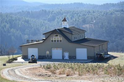 Single Family Home For Sale: 365 Cross Mountain Road