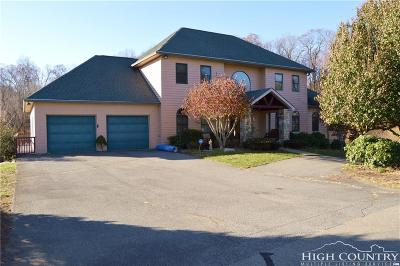 Boone Single Family Home For Sale: 317 The Meadows
