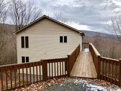 Beech Mountain Single Family Home For Sale: 114 Aster Trail