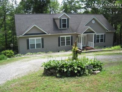 Avery County Single Family Home For Sale: 291 Teaberry Lane
