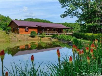 Avery County Single Family Home For Sale: 1345 Ivey Heights Road