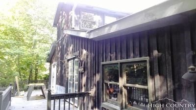 Ashe County Single Family Home For Sale: 157 Little Horse Path Road