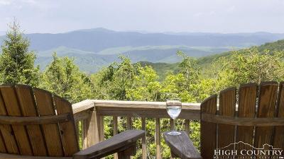 Banner Elk Single Family Home For Sale: 178 Windy Knob Trail