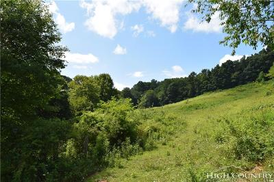 Avery County, Watauga County Residential Lots & Land For Sale: 3117/3119 Highway 88