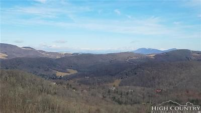 Sugar Mountain Condo/Townhouse For Sale: 202 Pleasant View Boulevard #9C