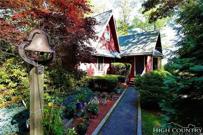 Linville Single Family Home For Sale: 123 Goose Hollow Road
