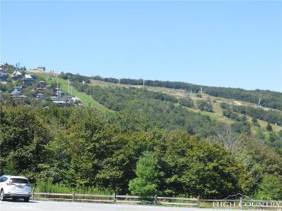 Beech Mountain NC Condo/Townhouse For Sale: $87,900