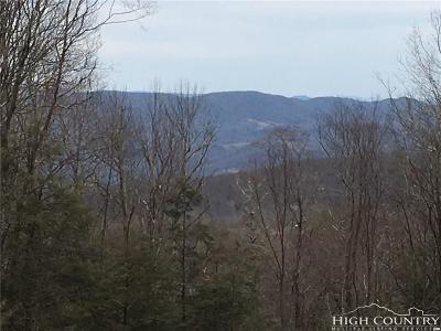 Avery County, Watauga County Residential Lots & Land For Sale: Es 13 Eagle Springs