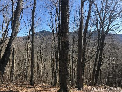 Avery County, Watauga County Residential Lots & Land For Sale: Tbd Tyneridge Road